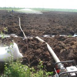 Внесение биопрепарата на нефтезагрязненный участок.
